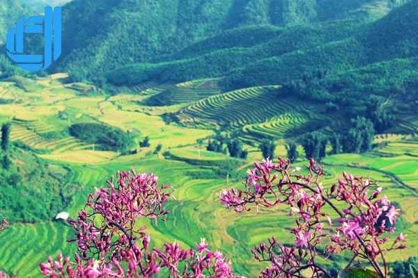 4 nét ẩm thực độc đáo của người Điện Biên