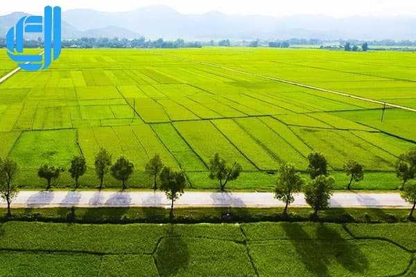 5 điểm du lịch nổi tiếng Điện Biên mà bạn phải đến