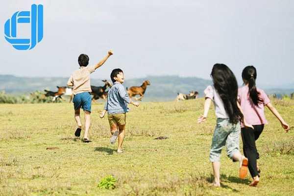 Kinh nghiệm du lịch Phú Yên tìm dấu chân địa đàng nơi Bãi Xép xinh đẹp