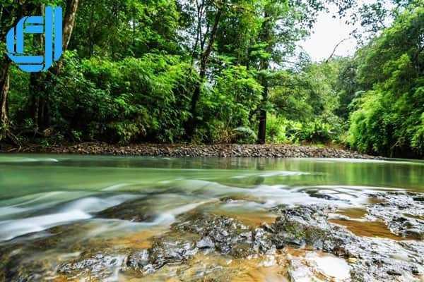 Những kinh nghiệm cần biết khi đi du lịch Bình Phước