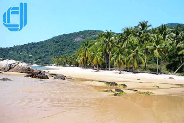 Tour du lịch Cù Lao Chàm trong 1 ngày giá rẻ khởi hành hằng ngày