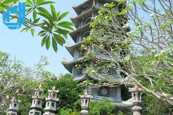 Tour du lịch Đà Lạt Đà Nẵng Cù Lao Chàm 3 ngày 2 đêm