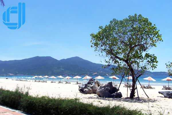 Tour đi Đà Nẵng từ TPHCM nên ăn gì ngon ở đâu rẻ nhất nên đọc qua